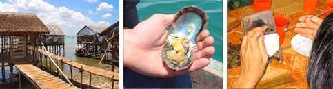 Морски перли